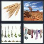 4 pics 1 word 3 letter answers dry expocarfo Gallery