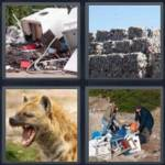 4 Pics 1 Word 8 Letter Answers